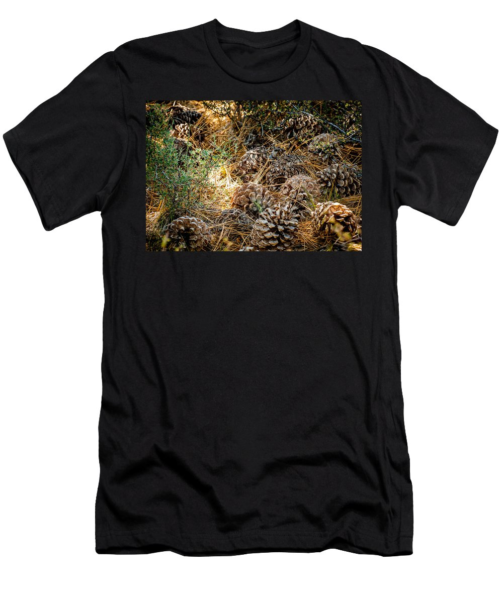 Pine Cones Men's T-Shirt (Athletic Fit) featuring the photograph Pine Cones by Cathy Smith