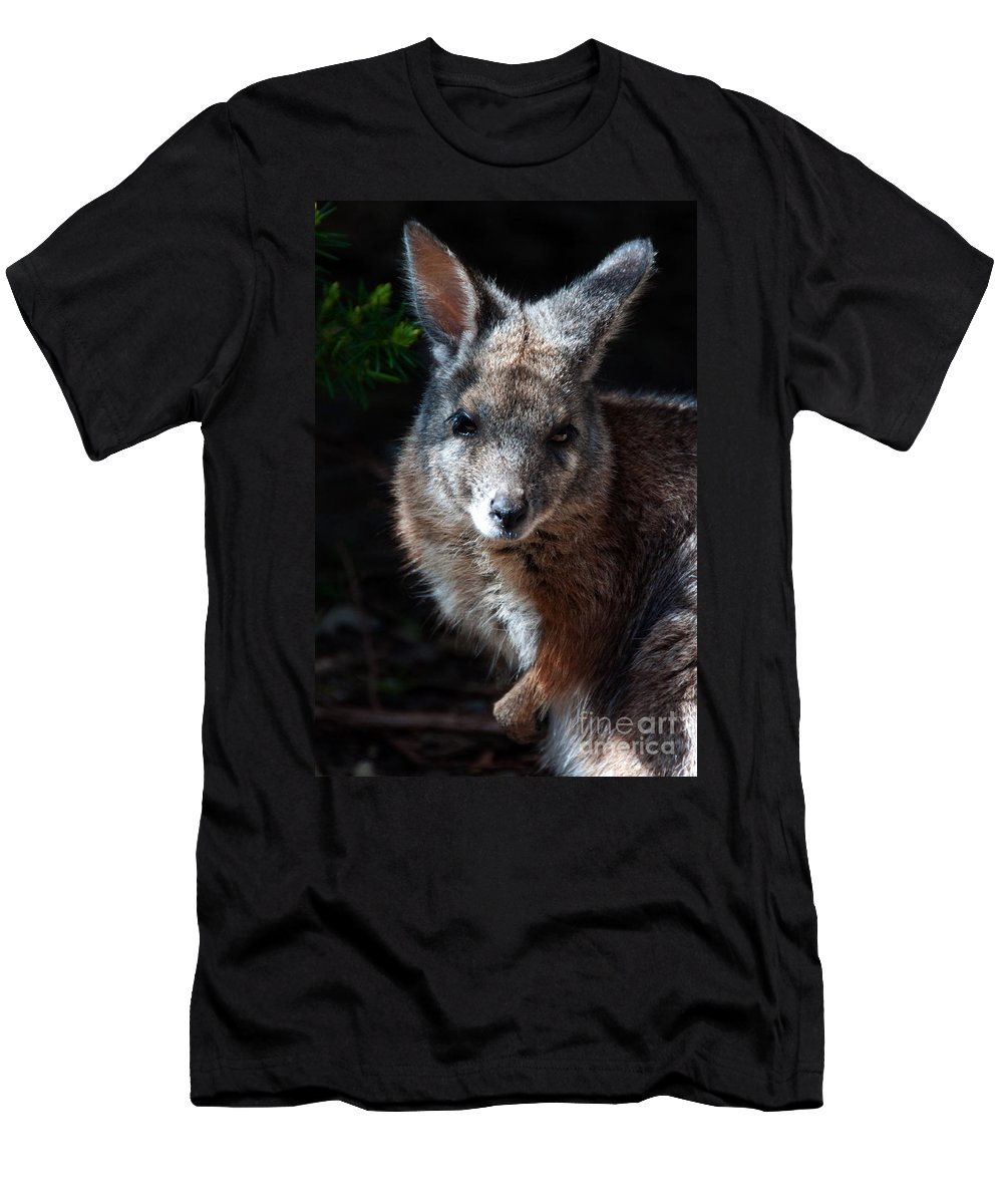 Portrait Men's T-Shirt (Athletic Fit) featuring the photograph Portrait Of A Wallaby by Rob Hawkins