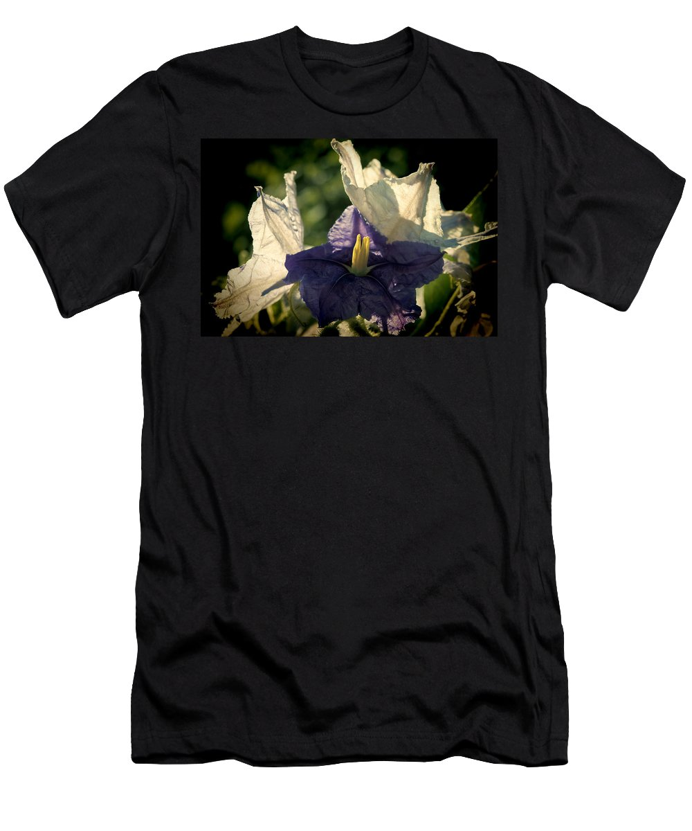 Flower Men's T-Shirt (Athletic Fit) featuring the photograph Radiance by Steven Sparks