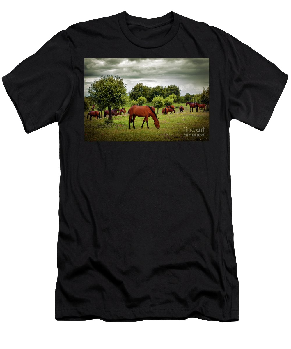 Agriculture Men's T-Shirt (Athletic Fit) featuring the photograph Red Horses by Carlos Caetano