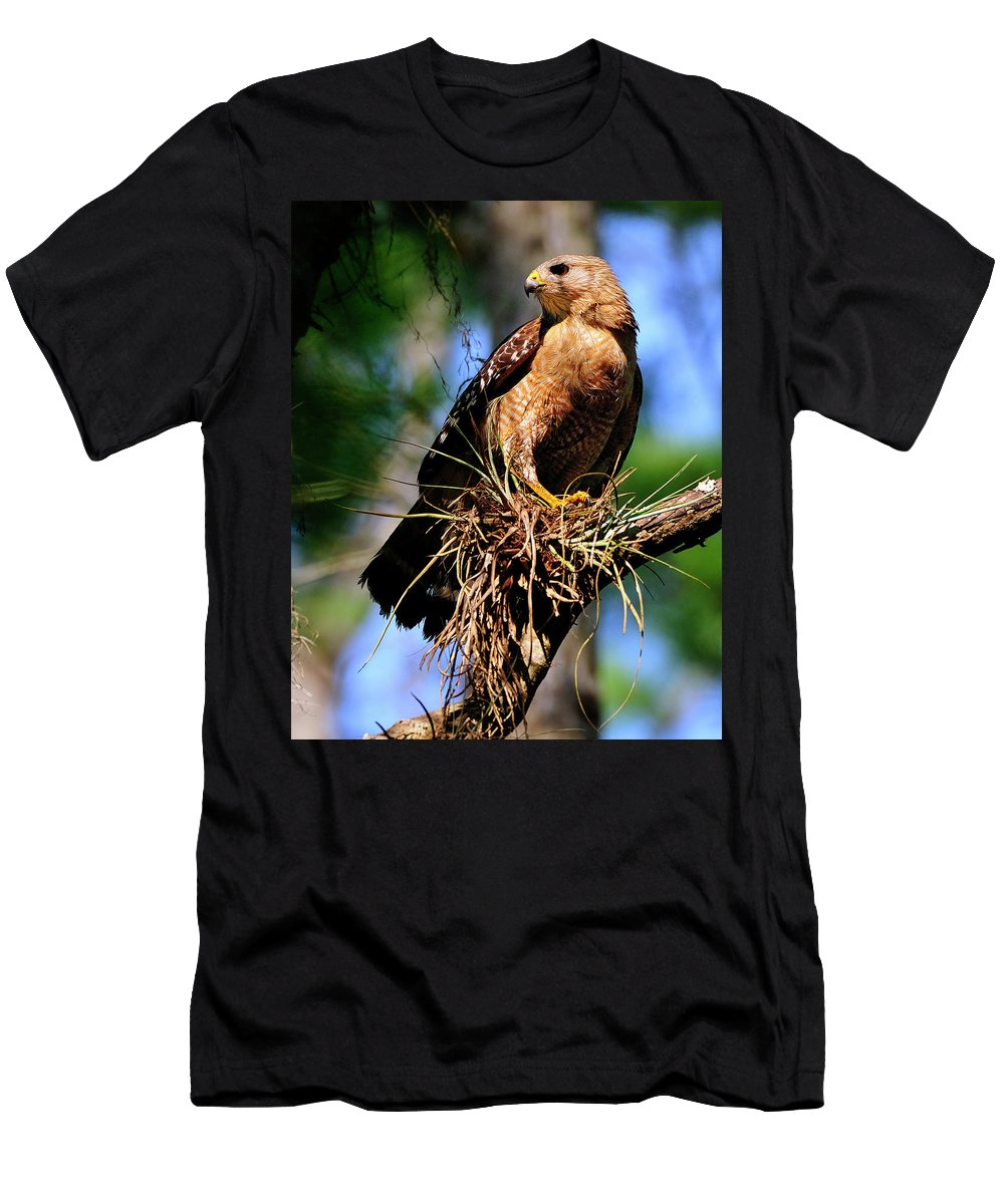 Red-shouldered Men's T-Shirt (Athletic Fit) featuring the photograph Red-shouldered Hawk by Bill Dodsworth