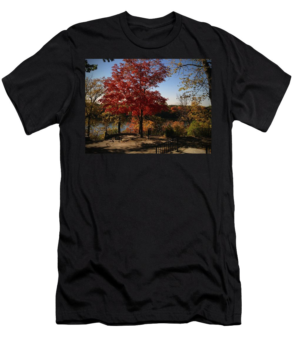 Fall Men's T-Shirt (Athletic Fit) featuring the photograph River Tree by Tim Nyberg
