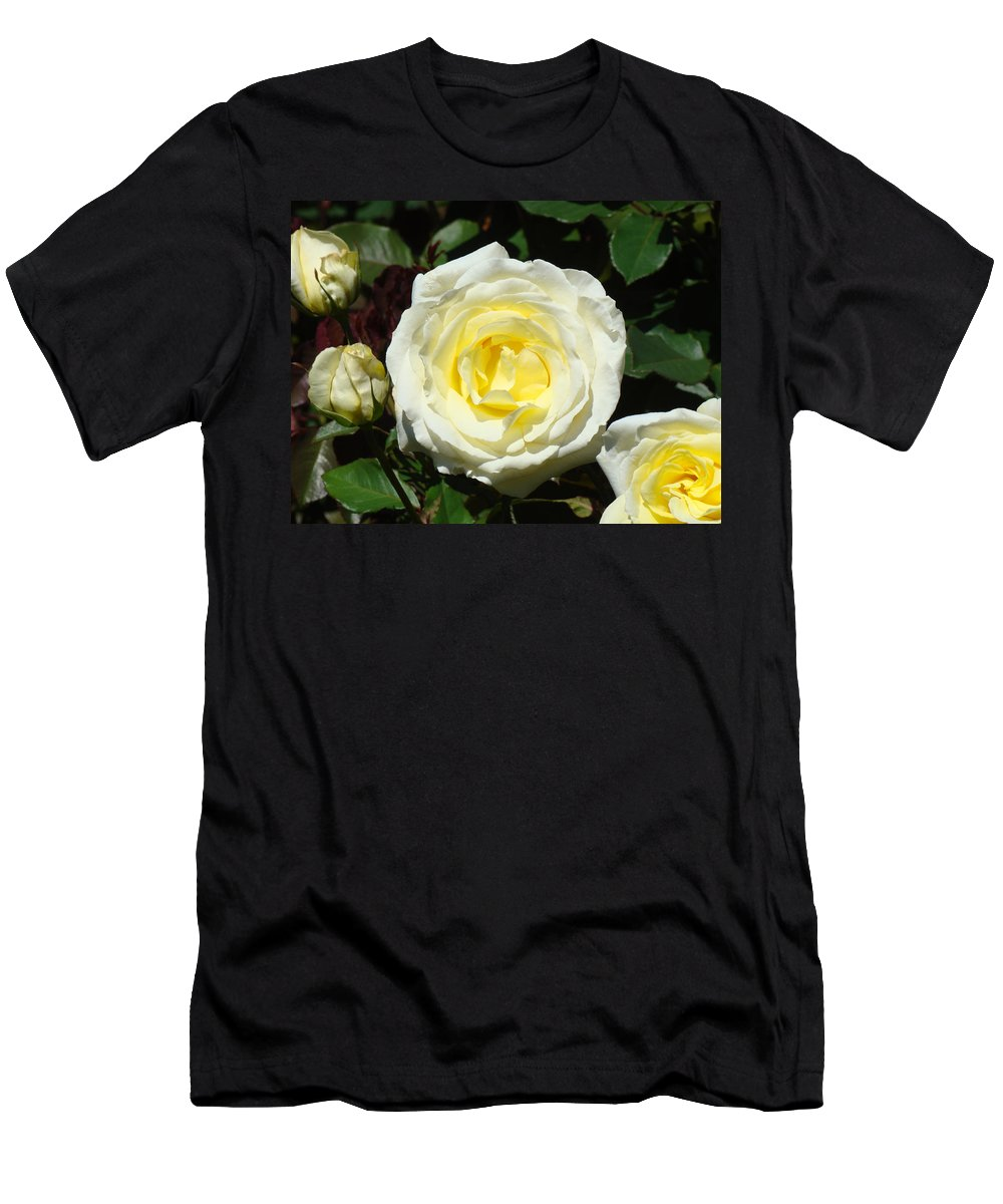 Rose T-Shirt featuring the photograph Rose Floral art prints Yellow Roses Flowers by Patti Baslee