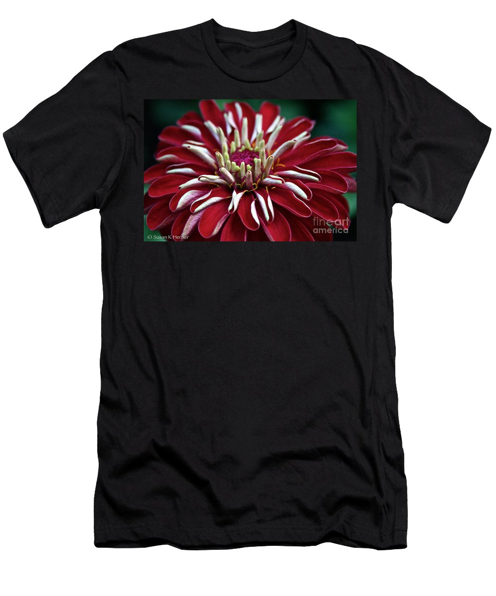 Plant Men's T-Shirt (Athletic Fit) featuring the photograph Ruby Zinnia by Susan Herber