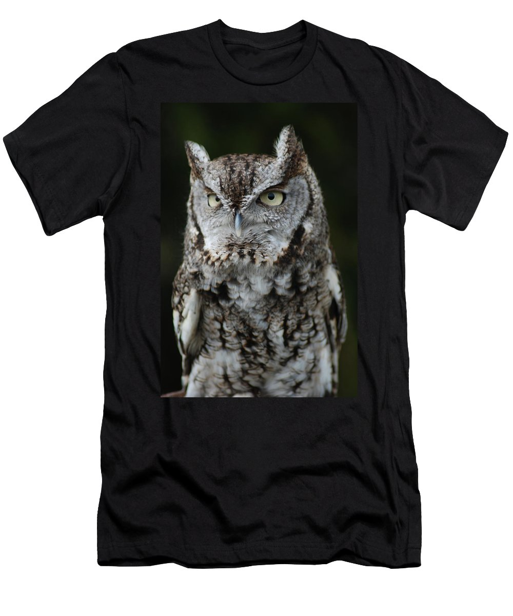 Raptor Men's T-Shirt (Athletic Fit) featuring the photograph Screech Owl by Richard Bryce and Family