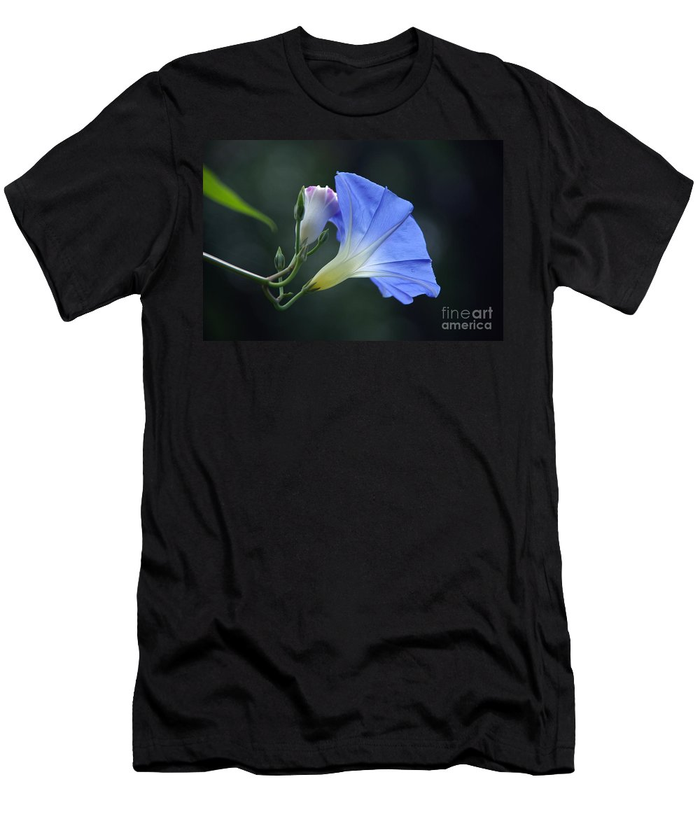 Morning Glory Men's T-Shirt (Athletic Fit) featuring the photograph September Song by Byron Varvarigos
