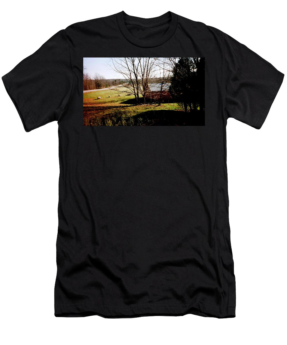 Sheep Men's T-Shirt (Athletic Fit) featuring the photograph Sheep Farm by April Patterson