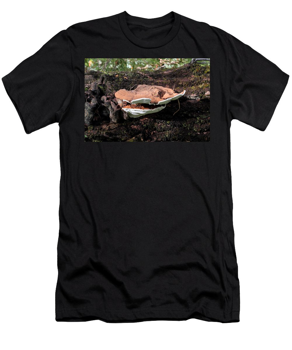 Doug Lloyd Men's T-Shirt (Athletic Fit) featuring the photograph Shelf Mushrooms by Doug Lloyd