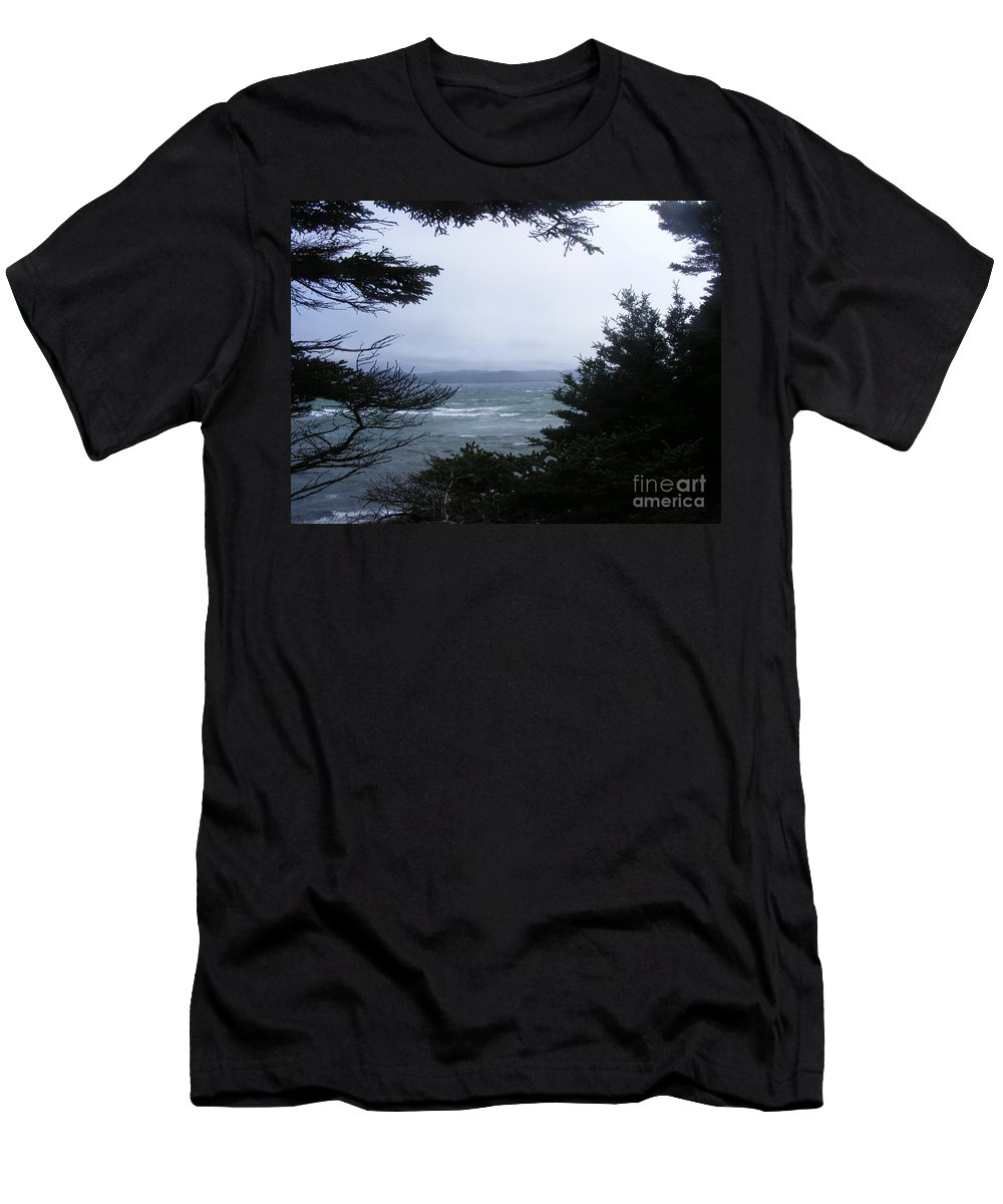 Shelter From Irene Men's T-Shirt (Athletic Fit) featuring the photograph Shelter From Irene by Barbara Griffin
