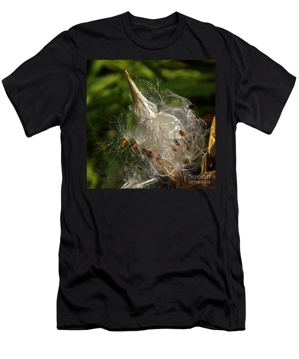 Milkweed Seed Pod Men's T-Shirt (Athletic Fit) featuring the photograph Silky Milkweed by Byron Varvarigos