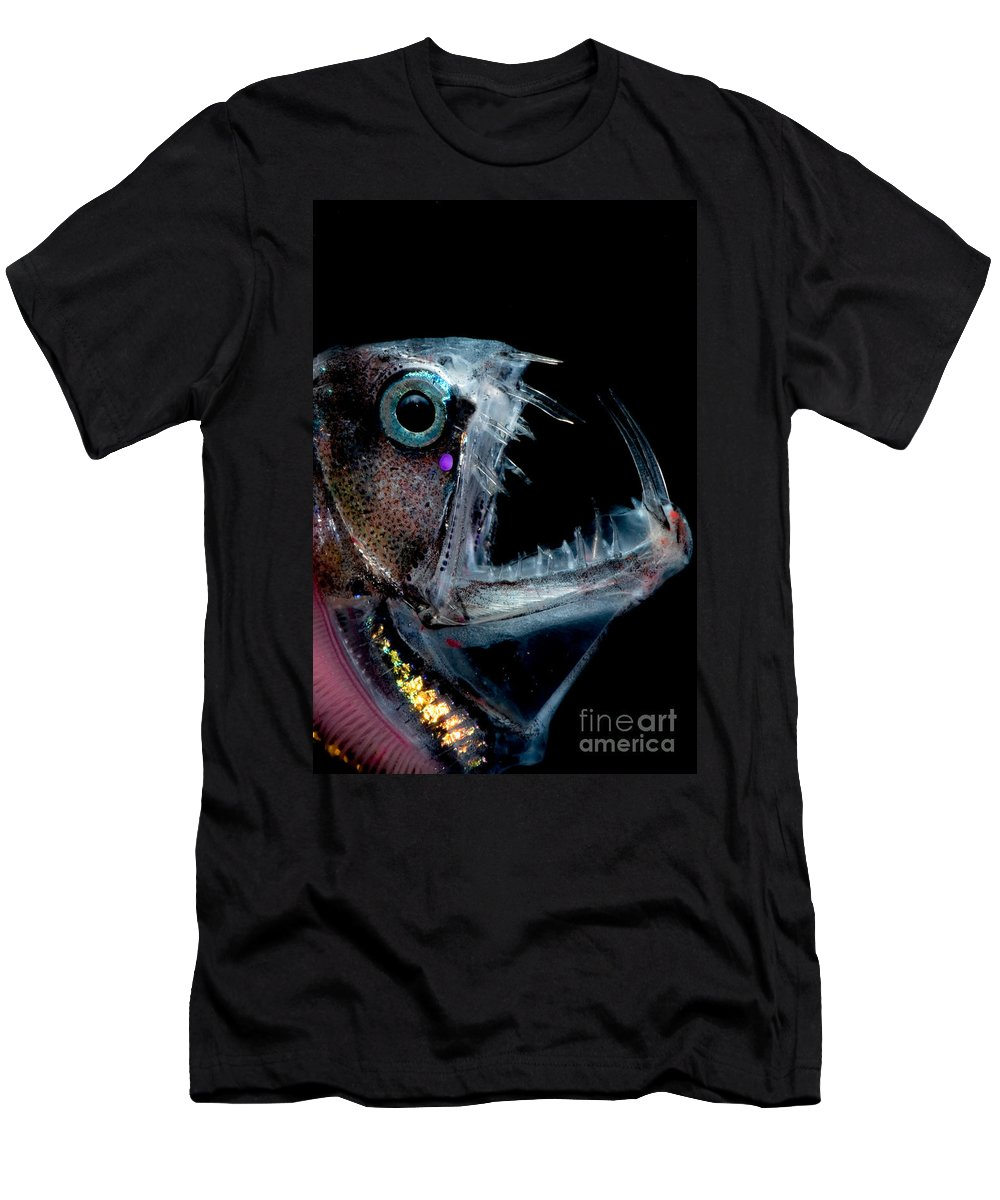 Chauliodus Sloani Men's T-Shirt (Athletic Fit) featuring the photograph Sloanes Viperfish by Dante Fenolio