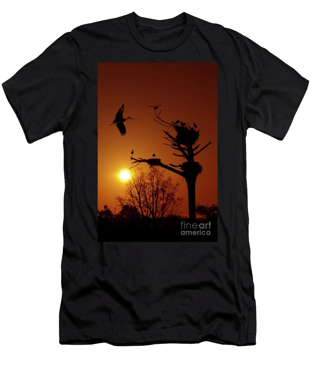 Stork Men's T-Shirt (Athletic Fit) featuring the photograph Storks by Carlos Caetano