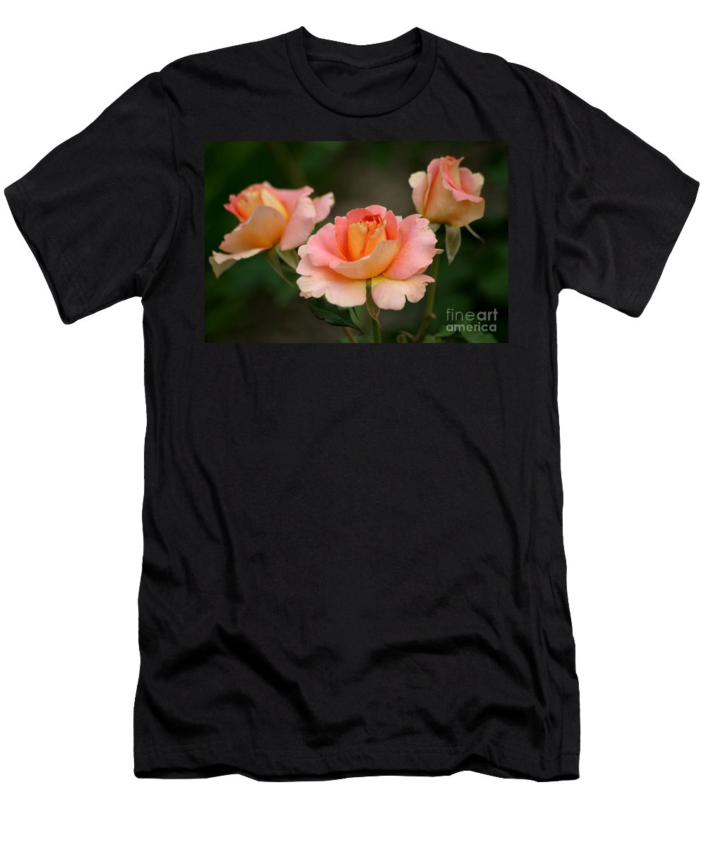 Rose Men's T-Shirt (Athletic Fit) featuring the photograph Strike Up The Band by Living Color Photography Lorraine Lynch