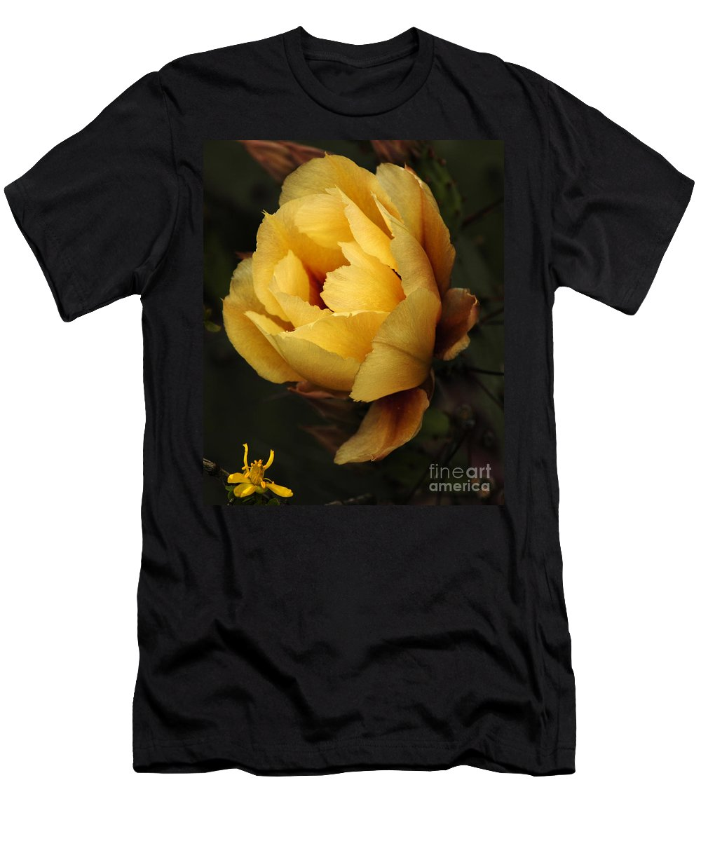 Prickly Pear Cactus Men's T-Shirt (Athletic Fit) featuring the photograph Study In Yellow by Vivian Christopher