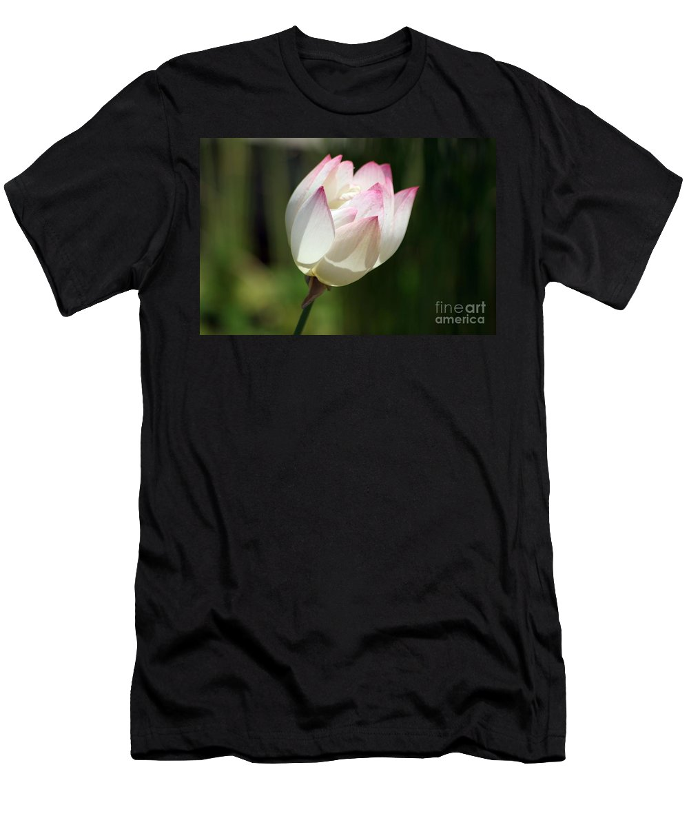 Flower T-Shirt featuring the photograph Sun Kissed by Living Color Photography Lorraine Lynch