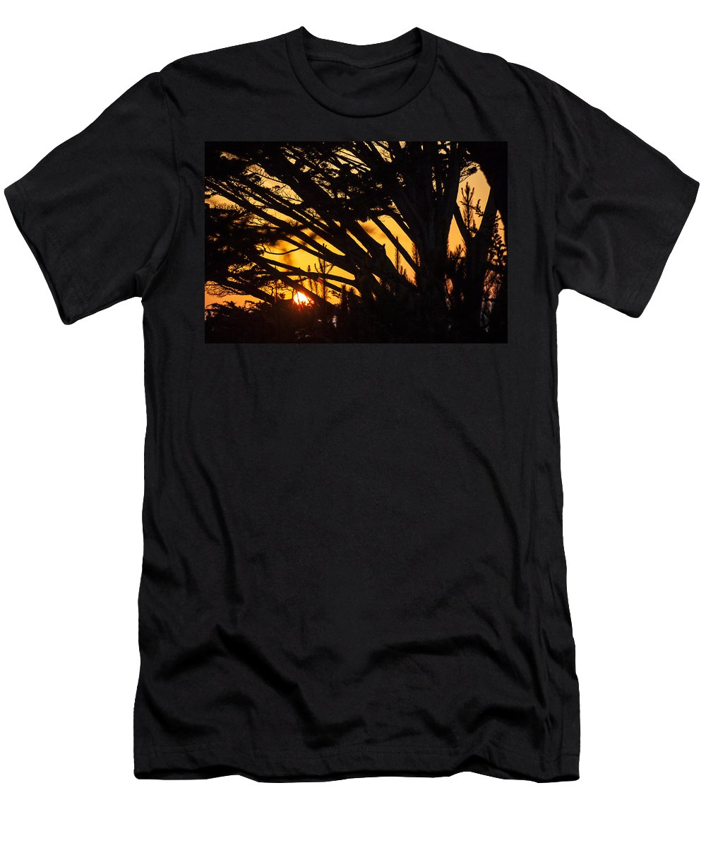 Sunset Men's T-Shirt (Athletic Fit) featuring the photograph Sunset In The Trees by Garry Gay