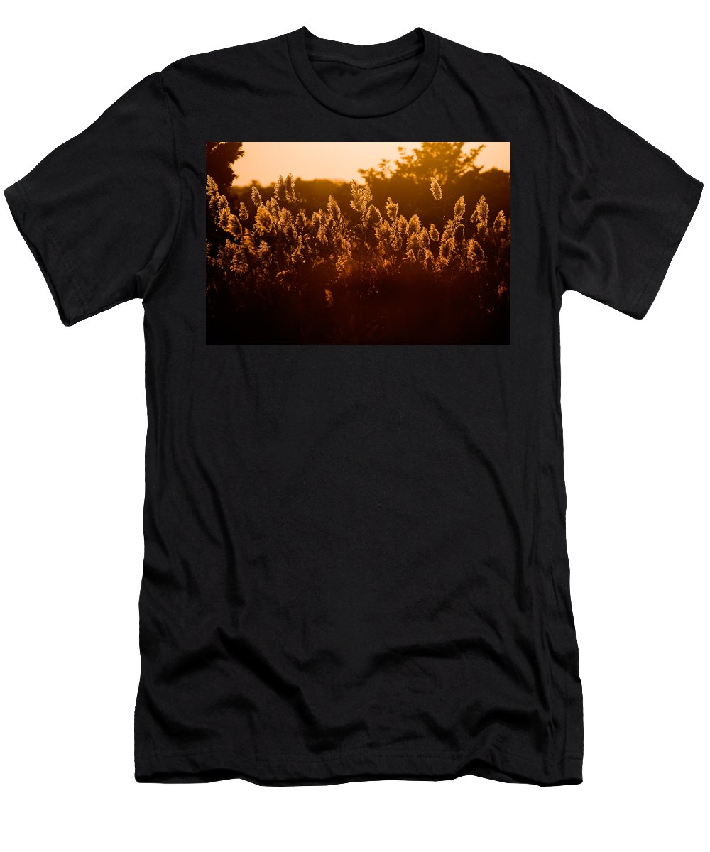 Fire Island Men's T-Shirt (Athletic Fit) featuring the photograph The Dunes- Fire Island by Rick Berk