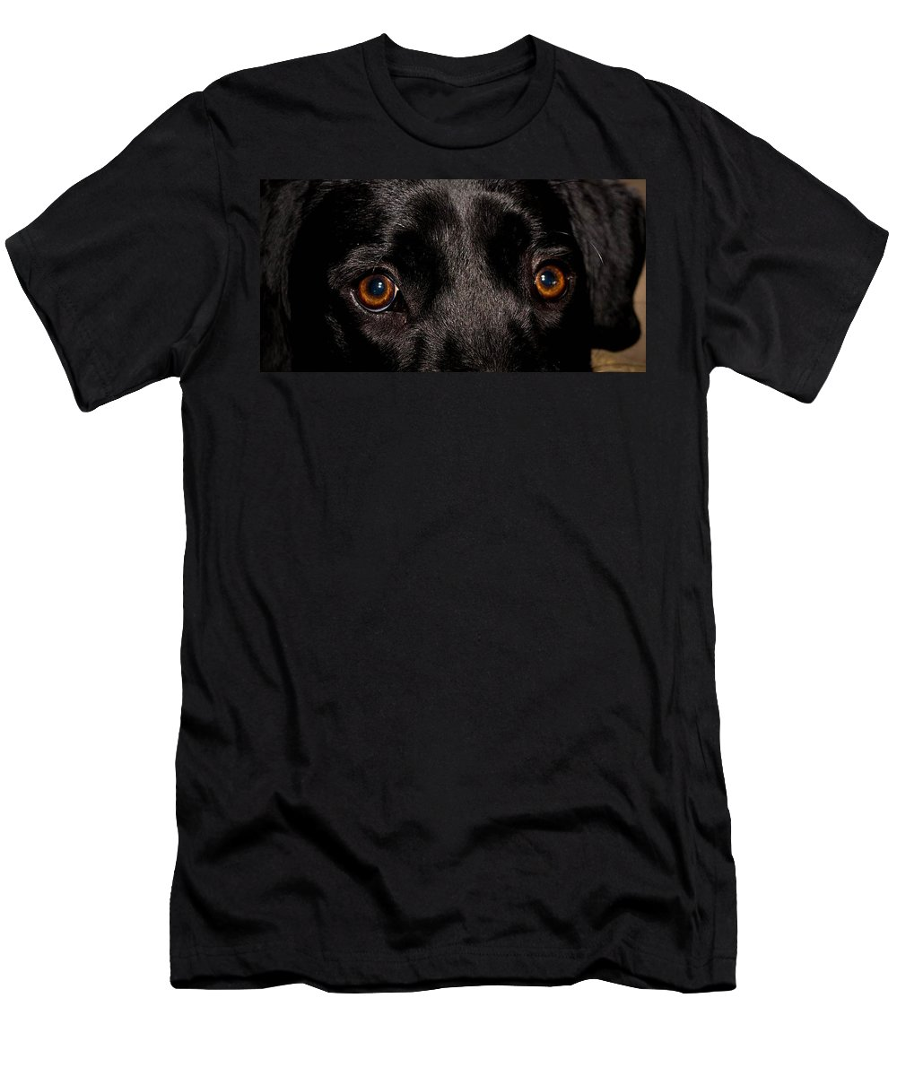 Eyes Men's T-Shirt (Athletic Fit) featuring the photograph The Eyes Have It by Cathy Smith