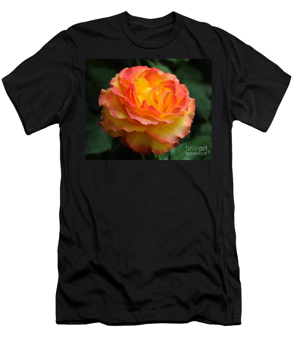 Rose Men's T-Shirt (Athletic Fit) featuring the photograph The Rose 2 by Vivian Christopher
