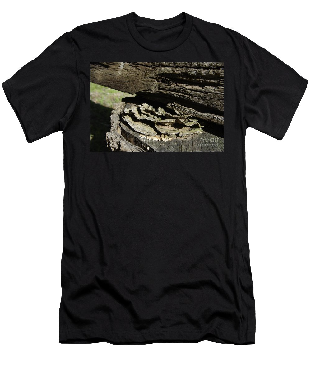 Tree Men's T-Shirt (Athletic Fit) featuring the photograph Tree Growth by Alice Markham