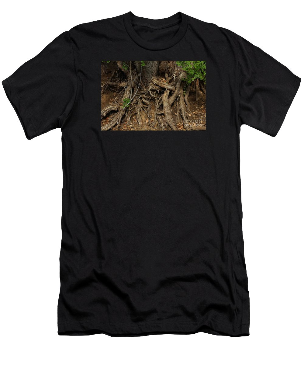 Tree Men's T-Shirt (Athletic Fit) featuring the photograph Tree Root's In The Creek Bed by Robert D Brozek