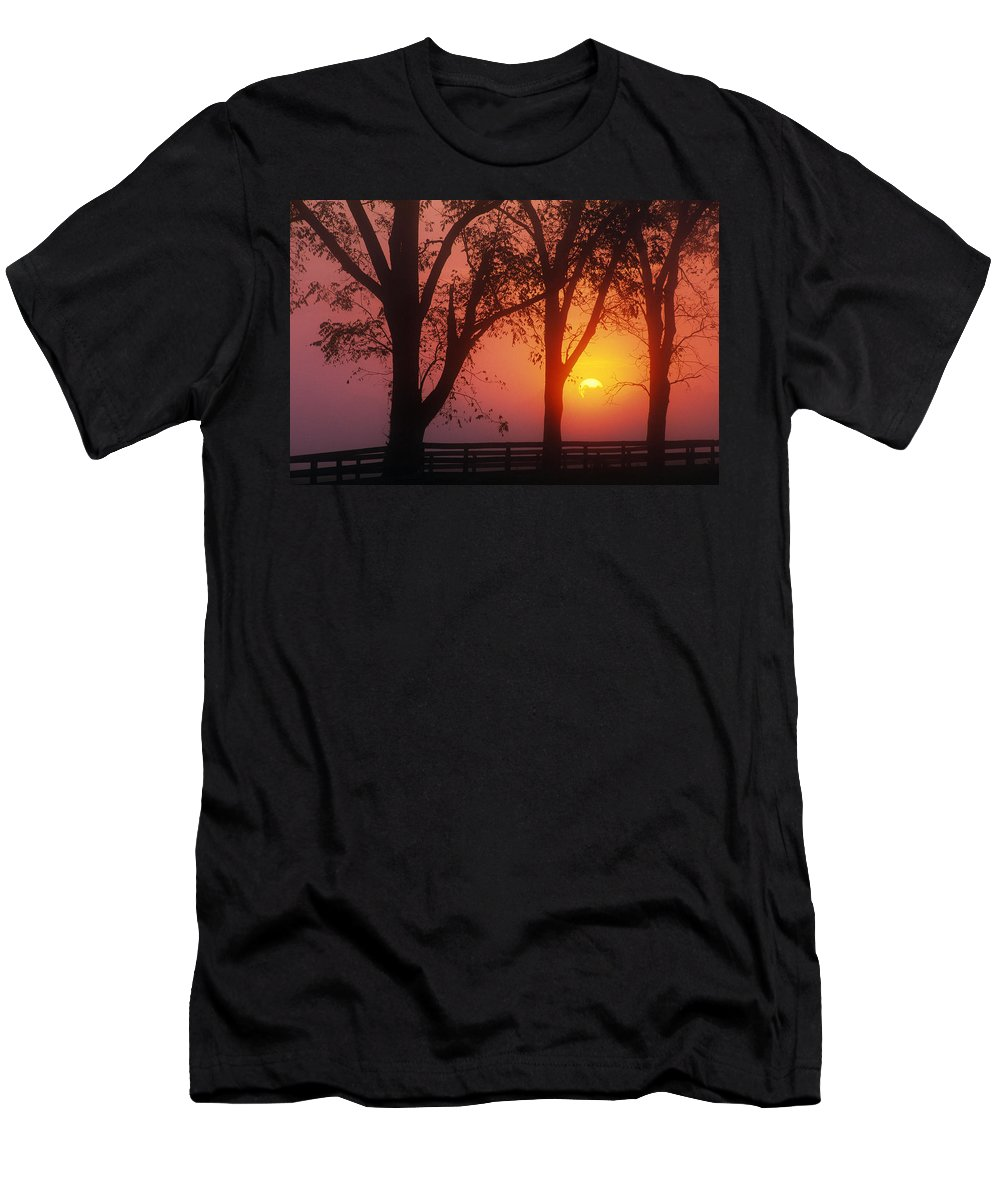 Outdoors Men's T-Shirt (Athletic Fit) featuring the photograph Trees In The Sunrise by Natural Selection Tony Sweet