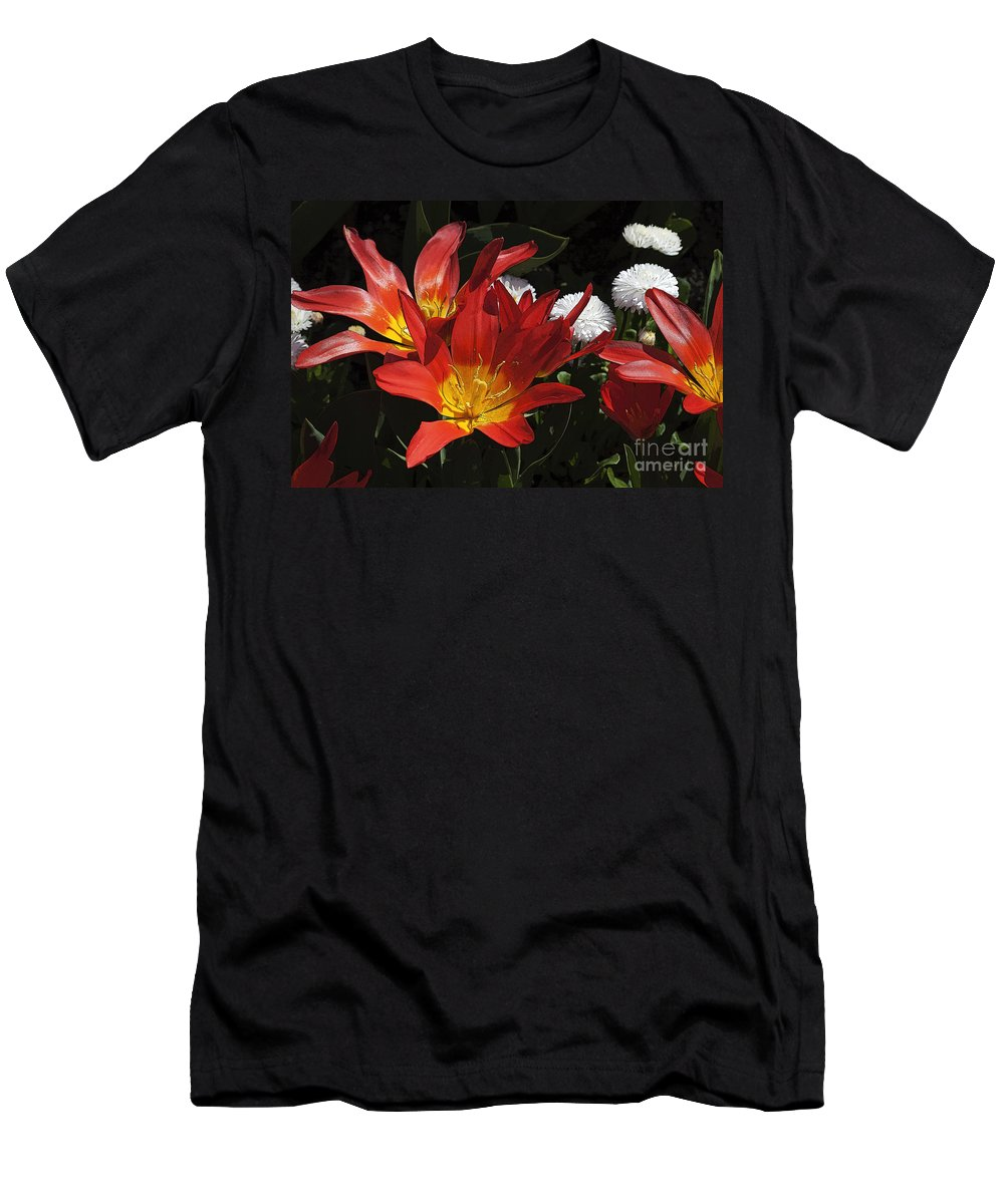 Tulips Men's T-Shirt (Athletic Fit) featuring the photograph Tulips And Daisies by Louise Heusinkveld