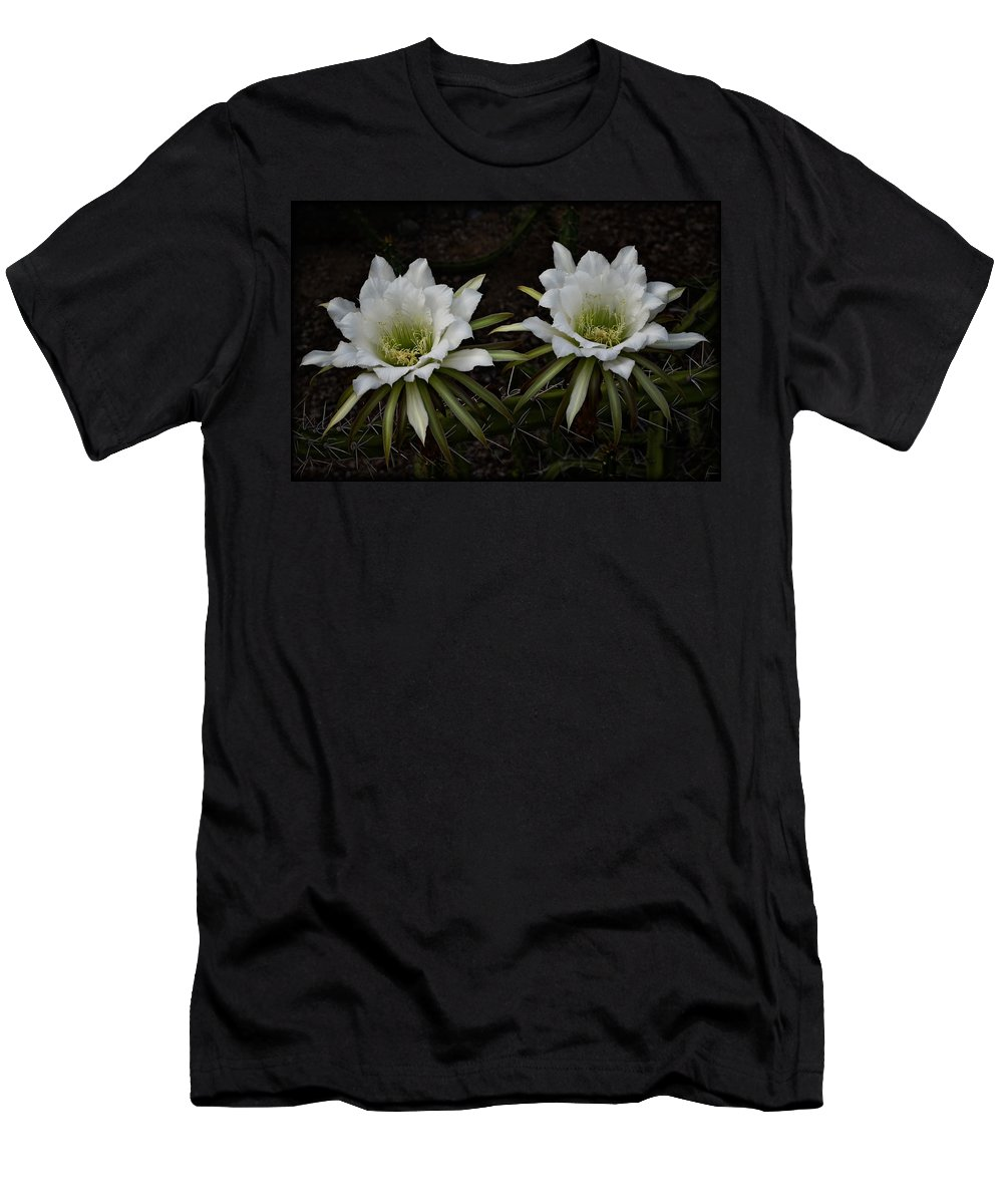 White Echinopsis Flowers Men's T-Shirt (Athletic Fit) featuring the photograph Two Of A Kind by Saija Lehtonen