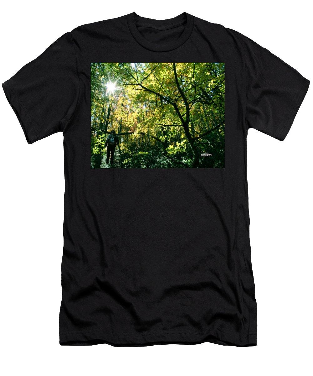 Under A Golden Canopy T-Shirt featuring the photograph Under a Golden Canopy by Seth Weaver