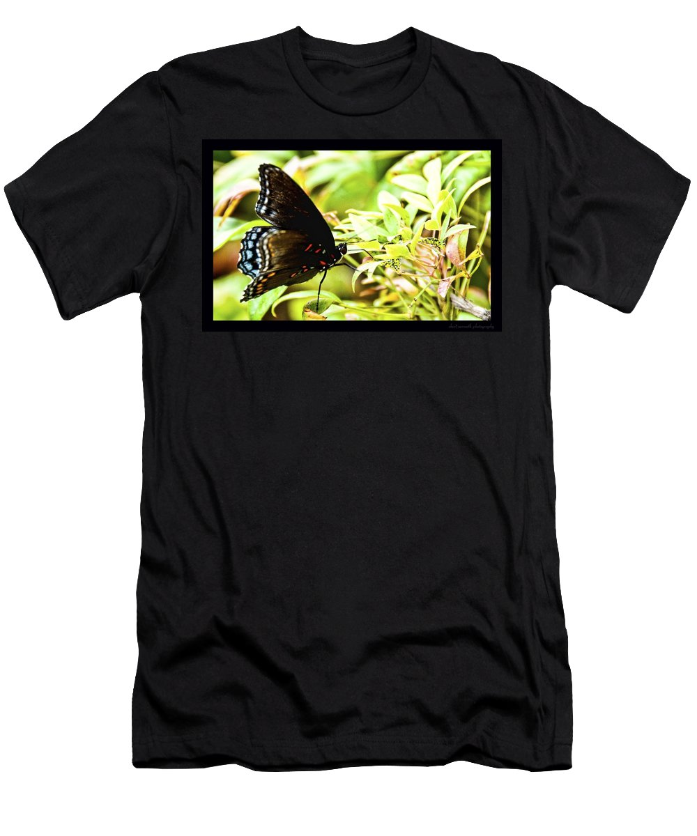Butterfly Men's T-Shirt (Athletic Fit) featuring the photograph Waiting by Sheri Bartoszek