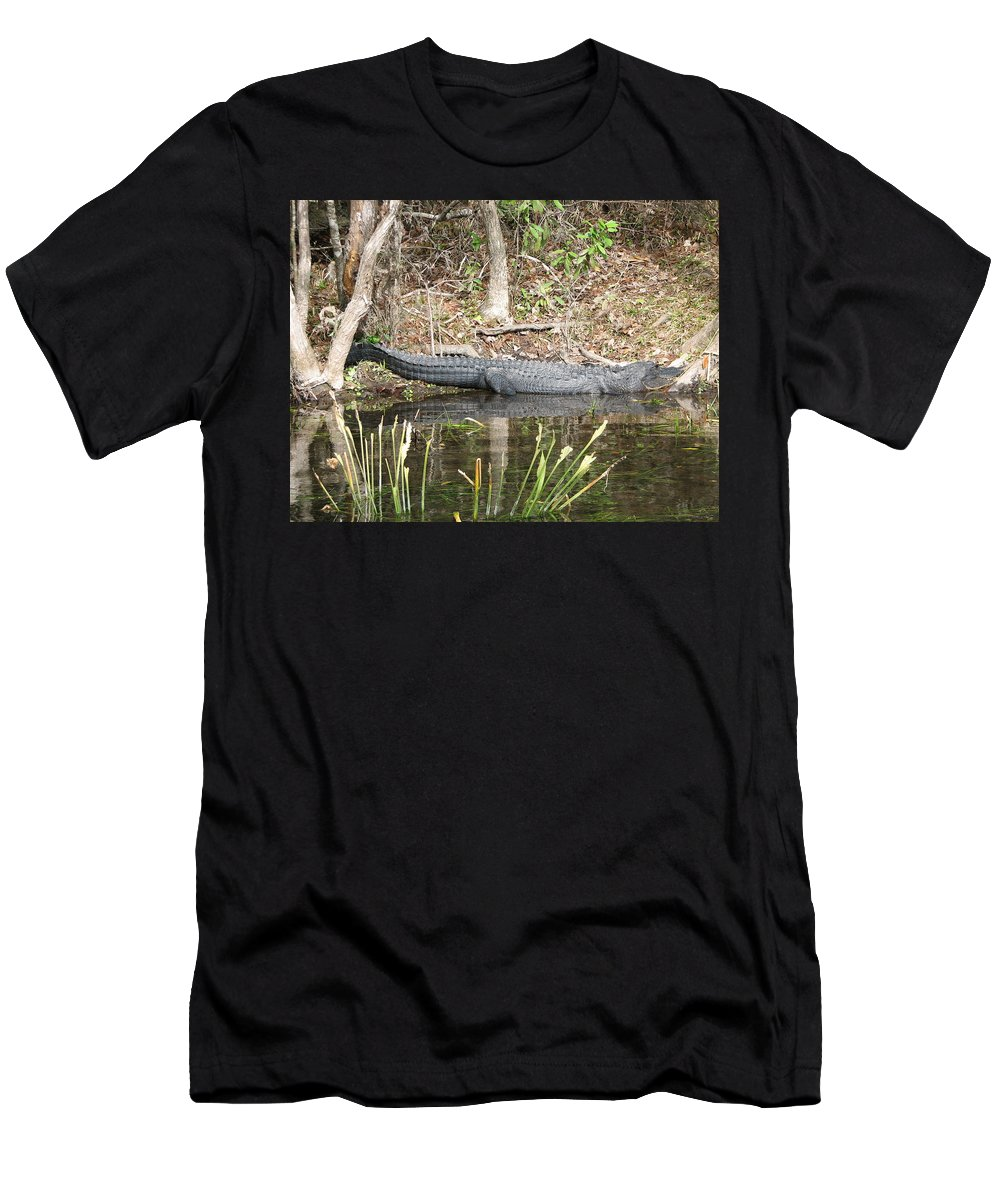 Alligator Men's T-Shirt (Athletic Fit) featuring the photograph Wakulla Springs Alligator by Carla Parris