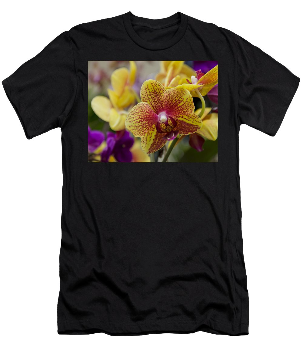Exotic Men's T-Shirt (Athletic Fit) featuring the photograph Walking On Sunshine by Angelina Vick