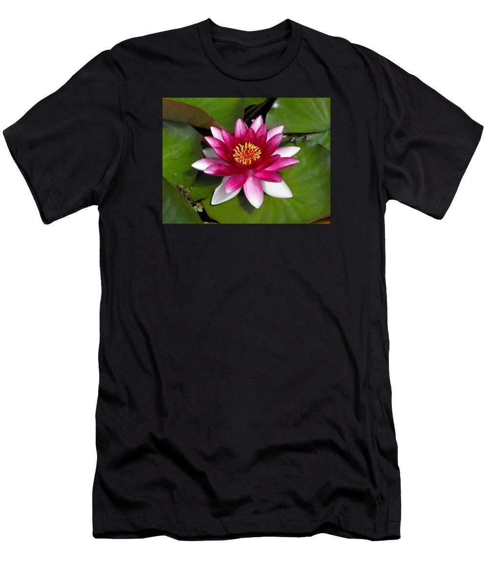 Water Lilly Men's T-Shirt (Athletic Fit) featuring the photograph Water Lilly by Marlene Challis
