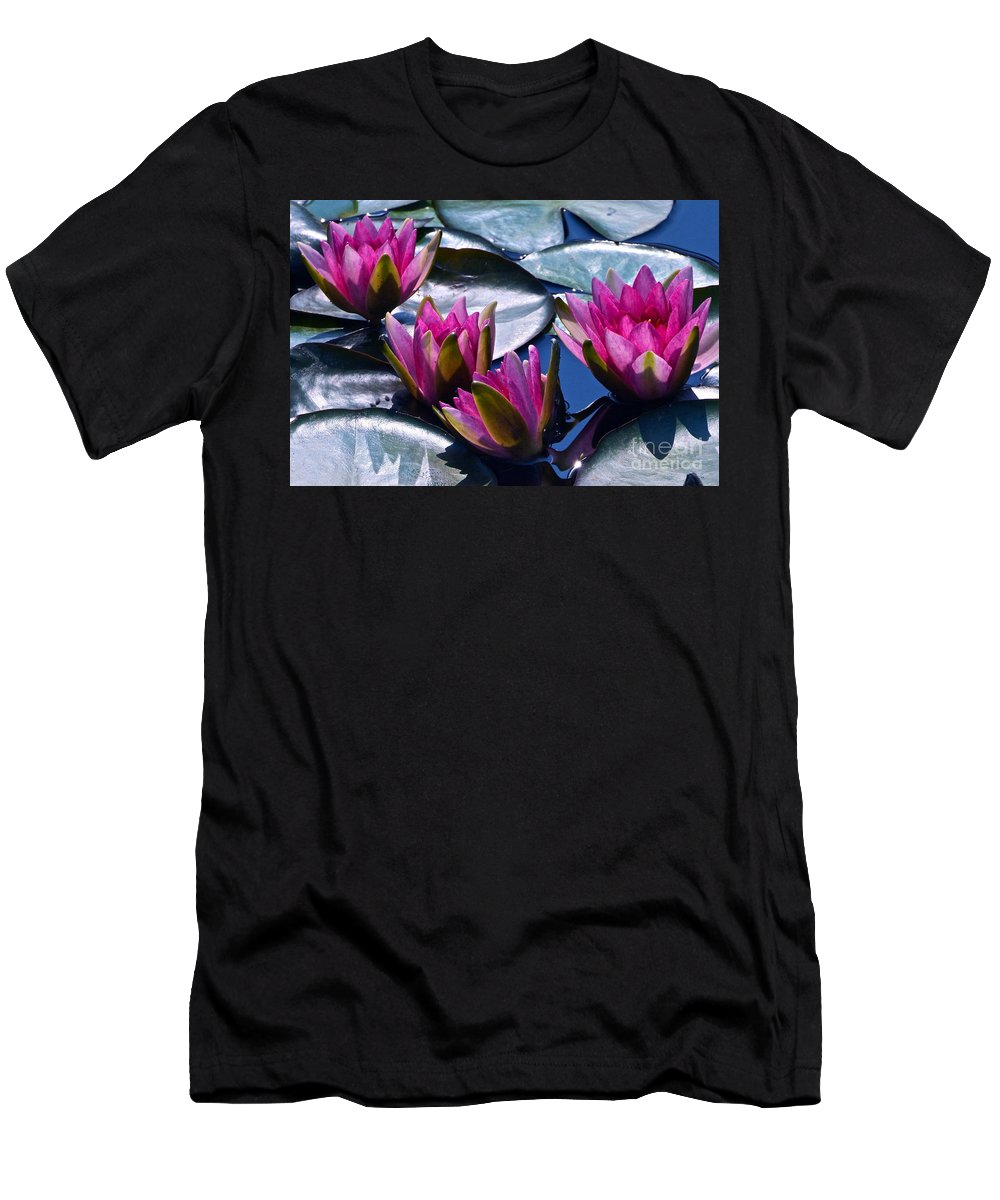 Hardy Garnet Waterlily Men's T-Shirt (Athletic Fit) featuring the photograph Waterlilies In Bright Sunlight by Byron Varvarigos