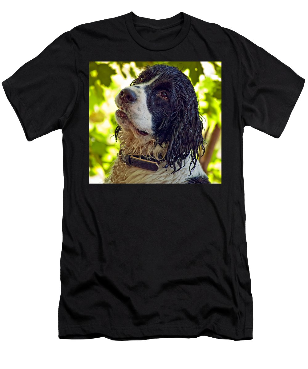 Spaniel Men's T-Shirt (Athletic Fit) featuring the photograph Wet Puppy by Steve Harrington
