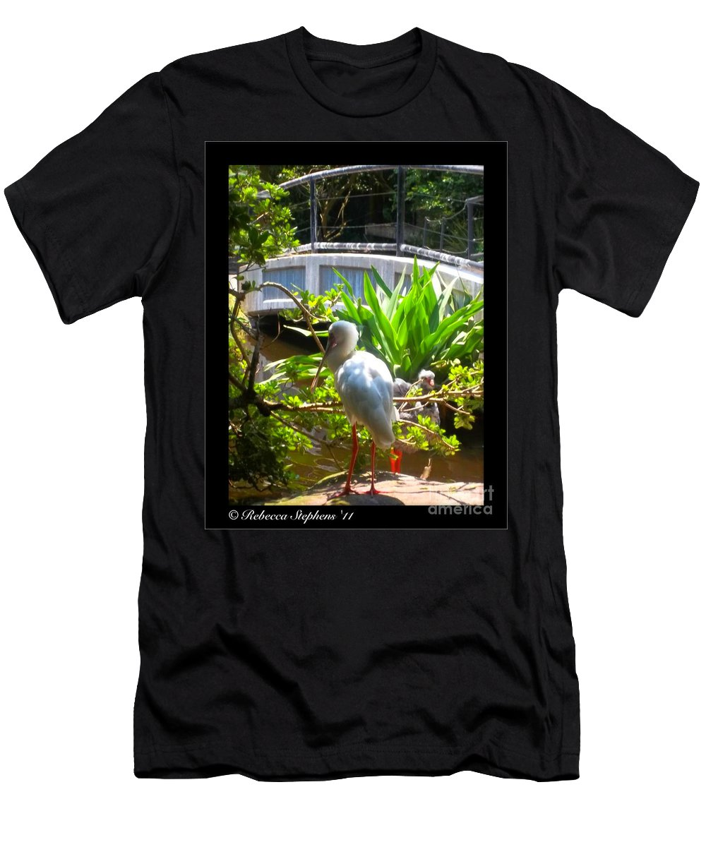 Zoo Men's T-Shirt (Athletic Fit) featuring the photograph White Zen by Rebecca Stephens