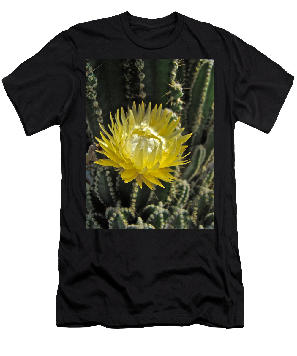 Cactus Men's T-Shirt (Athletic Fit) featuring the photograph Yellow Cactus Flower by Mother Nature