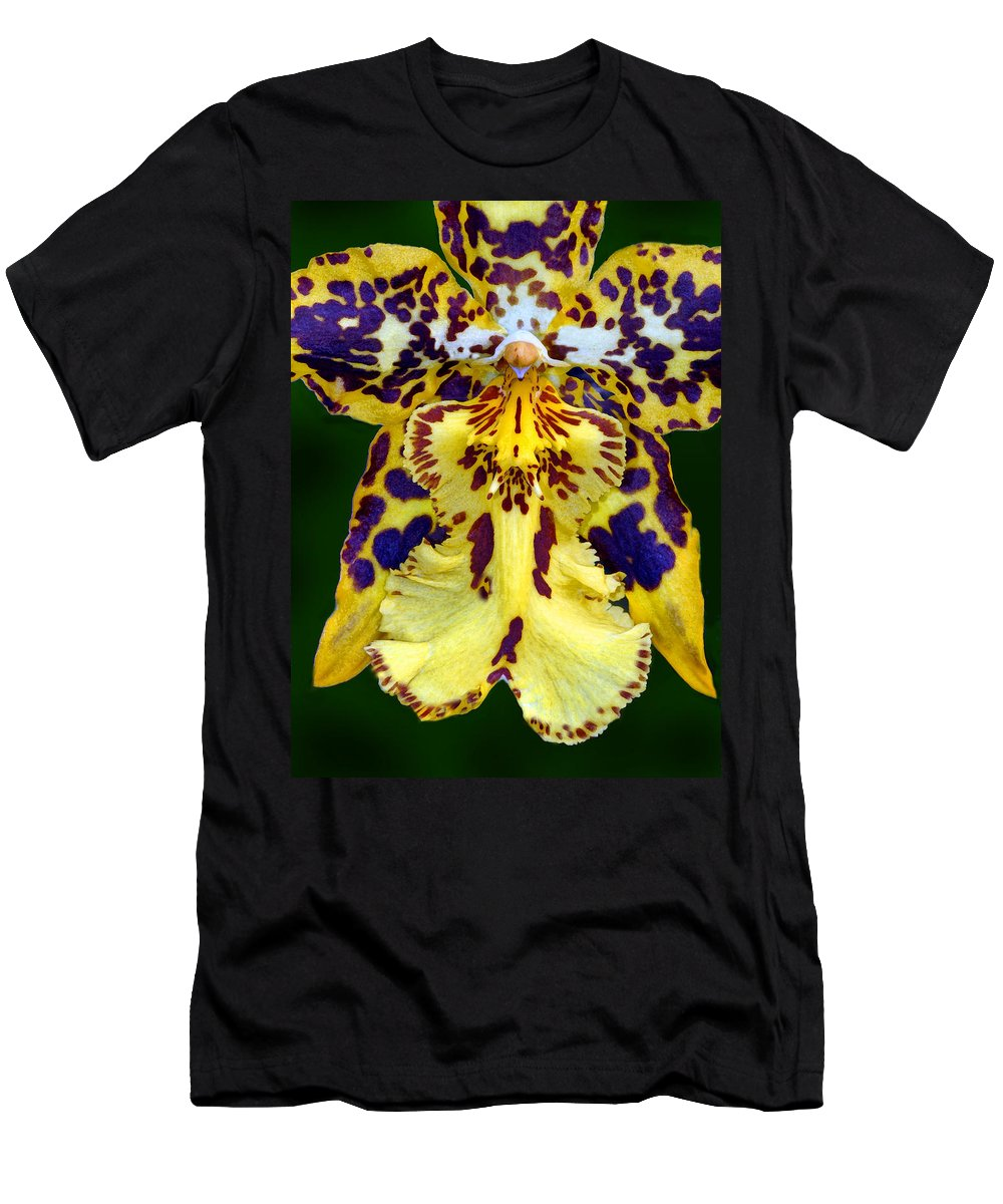 Orchid Men's T-Shirt (Athletic Fit) featuring the photograph Yellow Orchid by Dave Mills
