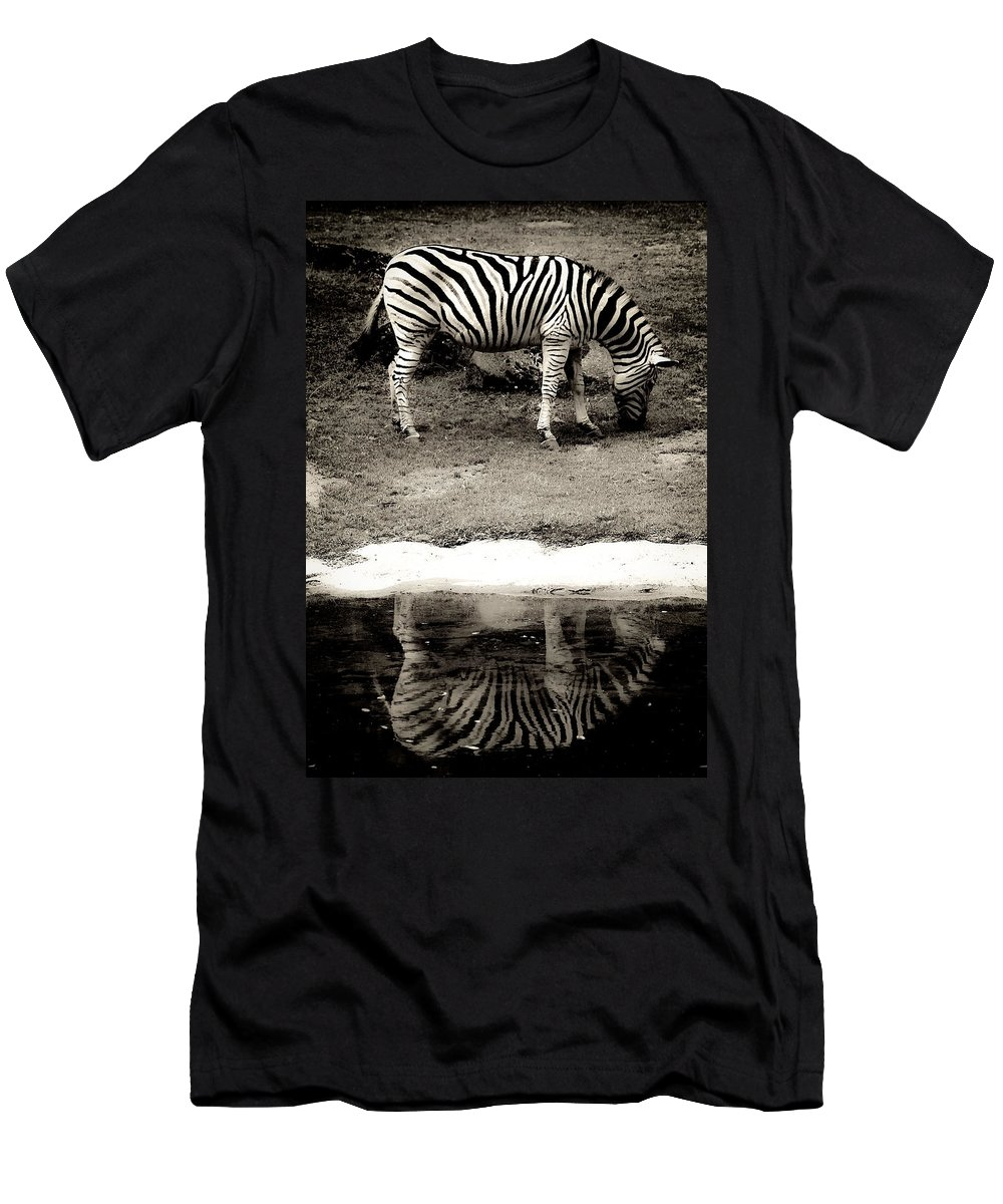 Zeebra Men's T-Shirt (Athletic Fit) featuring the photograph Zebra Reflection by Steve McKinzie