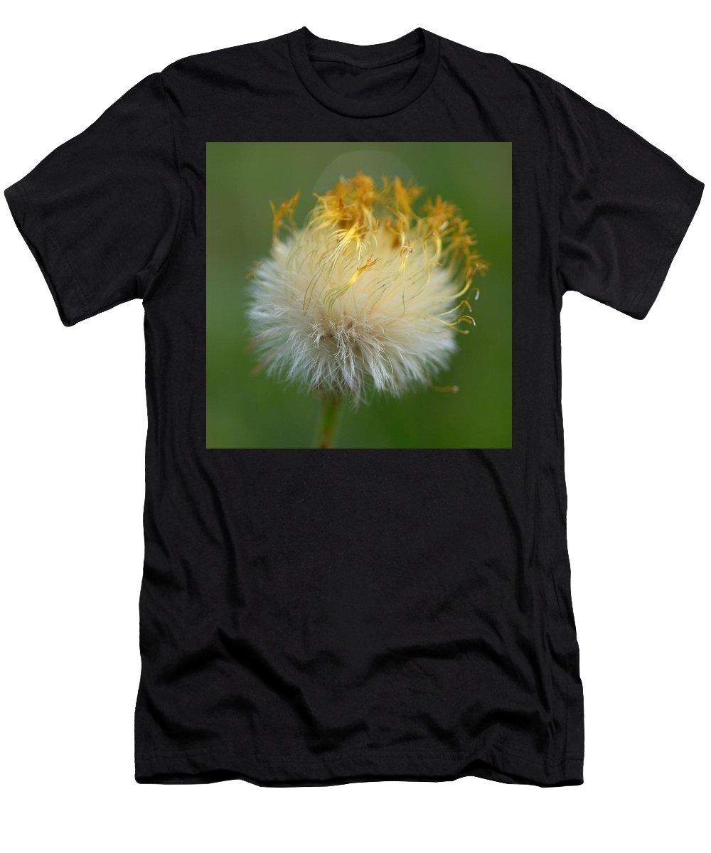 Lehtokukka Men's T-Shirt (Athletic Fit) featuring the photograph Coltsfoot B2 by Jouko Lehto