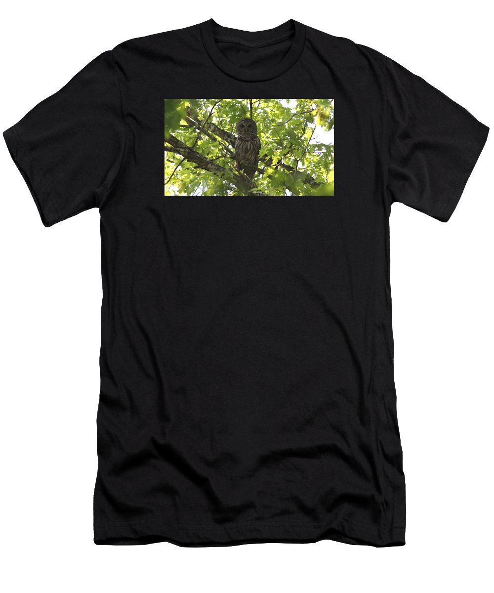 Barred Owl Men's T-Shirt (Athletic Fit) featuring the photograph 0313-010 - Barred Owl by Travis Truelove