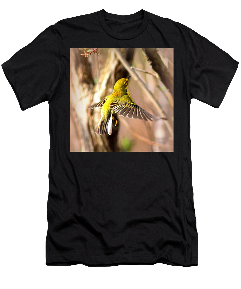 Prairie Warbler Men's T-Shirt (Athletic Fit) featuring the photograph 0818 - Prairie Warbler by Travis Truelove