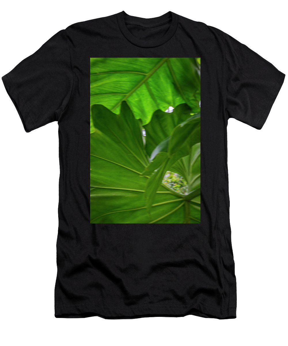 Green Leaves Men's T-Shirt (Athletic Fit) featuring the photograph 4327 - Leaves by David Lange
