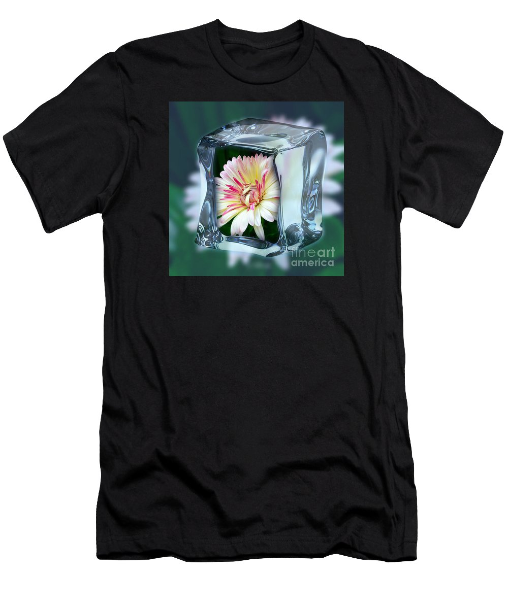 African Daisy Cube Men's T-Shirt (Athletic Fit) featuring the photograph African Daisy Cube by Jeannie Rhode