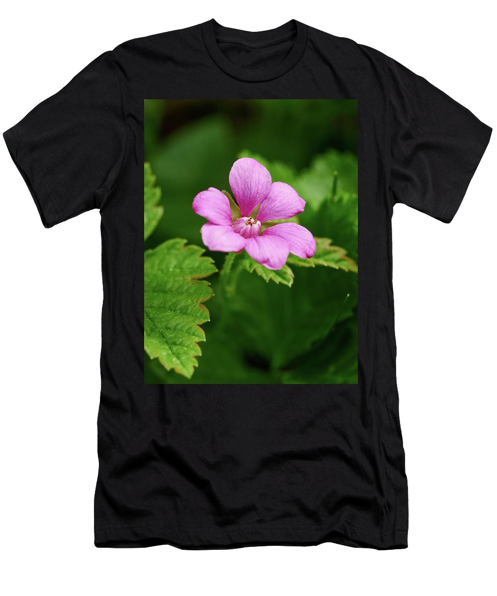 Finland Men's T-Shirt (Athletic Fit) featuring the photograph Arctic Bramble by Jouko Lehto