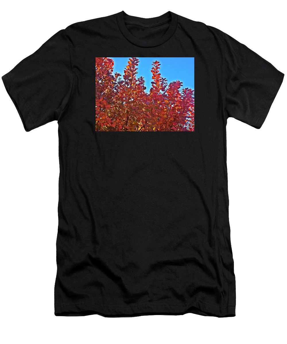 Red Men's T-Shirt (Athletic Fit) featuring the photograph Autumn Reds by Jo-Ann Hayden
