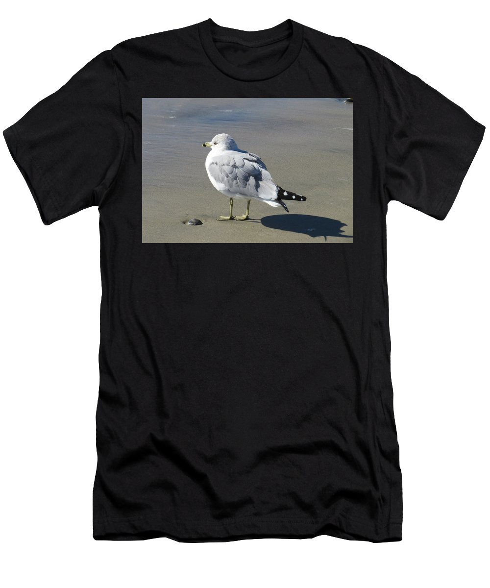 Ocean Men's T-Shirt (Athletic Fit) featuring the photograph Beach Bum Photograph by Kimberly Walker