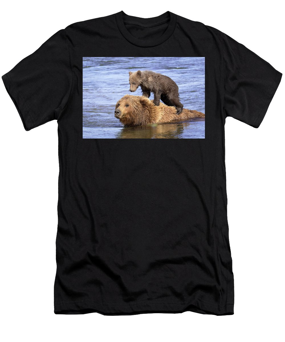 Brown Bear Men's T-Shirt (Athletic Fit) featuring the photograph Bear Back Rider by Jack Bell