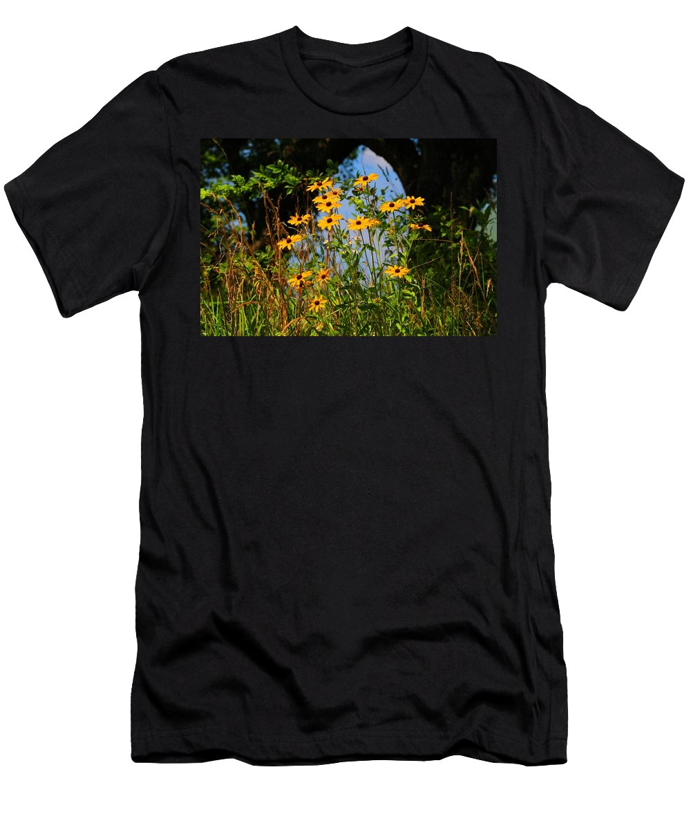 Black-eyed Susans Men's T-Shirt (Athletic Fit) featuring the photograph Black-eyed Susans by Kathryn Meyer