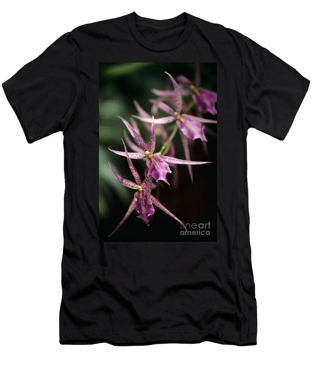 26-pfs0092 Men's T-Shirt (Athletic Fit) featuring the photograph Branch Of Pink by Allan Seiden - Printscapes